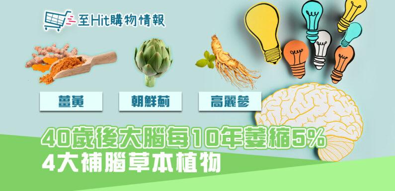 過了40歲大腦萎縮5%  認清4大 補腦 草本植物