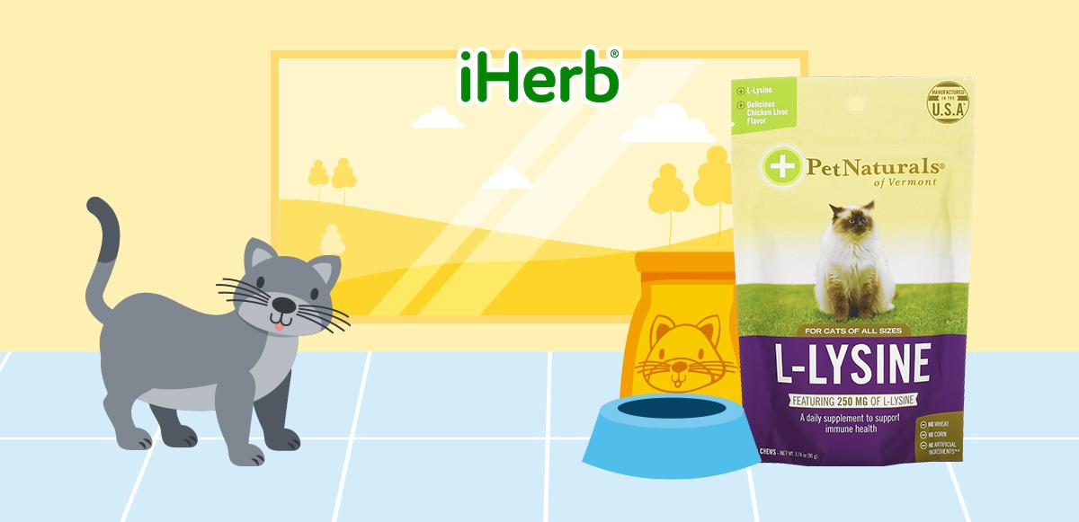 【iHerb】Pet Naturals of Vermont, 左旋賴氨酸,用於貓咪,雞肝味,250毫克,60 粒咀嚼片,3.17 盎司(90 克)