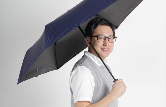 日本 Nifty Colors 條紋自動開合折傘 (現貨發售) 通過設計 NiftyColors HK$293.00 HK$244.00