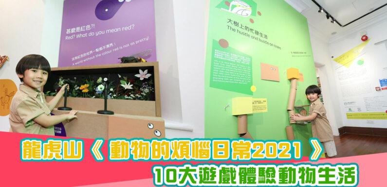 【假日好去處】 龍虎山 「動物的煩惱日常2021」展覽 10大遊戲體驗動物生活